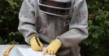 Aspromiele varroa monitoraggio
