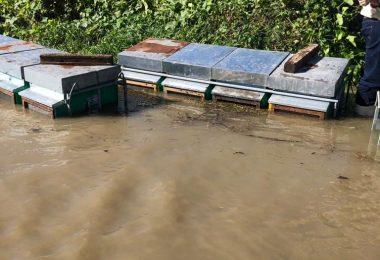 Alluvione api ottobre 2020
